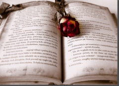 book-rose